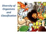 Diversity of Organisms and Classification