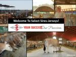 Welcome To Select Sires-Jerseys!