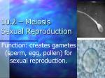 10.2 – Meiosis Sexual Reproduction