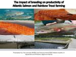 The impact of breeding on productivity of Atlantic Salmon and Rainbow Trout farming