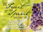 LESSON 4 The Fruit of Faith, Meekness, and Temperance