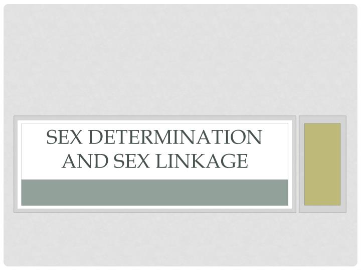 sex determination and sex linkage n.