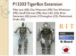 P13203 TigerBot Extension