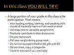 In this class YOU WILL TRY.
