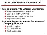 STRATEGY AND ENVIRONMENT FIT