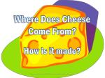 Where Does Cheese Come From?