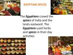 Egyptian spices