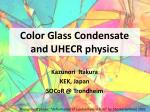 Color Glass Condensate and UHECR physics
