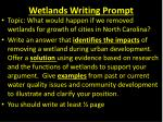 Wetlands Writing Prompt