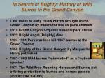 In Search of Brighty : History of Wild Burros in the Grand Canyon