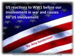 US reactions to WW1 before our involvement in war and causes for US involvement