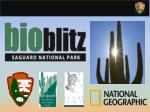National Geographic and National Park Service: 10 Years of BioBlitz