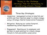 """Rising to the Challenge – Strategic Plan for Responding to Accelerating Climate Change"""