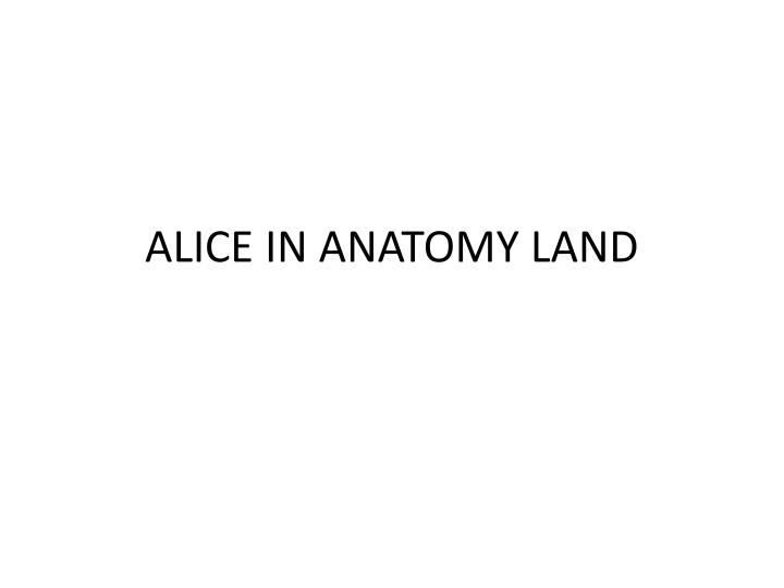 alice in anatomy land n.