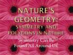 Nature's Geometry: Symmetry and polygons in Nature