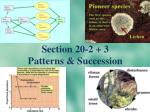 Section 20-2 + 3   Patterns & Succession
