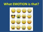 What EMOTION is that?