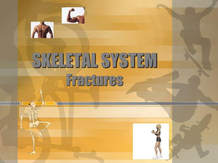 PPT SKELETAL SYSTEM Fractures PowerPoint Presentation ID