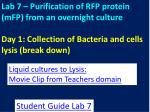 Liquid cultures to  Lysis : Movie Clip from Teachers domain