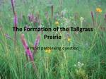The Formation of the Tallgrass Prairie