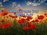 Remembrance Day POPPY DAY