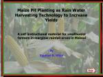 Maize Pit Planting as Rain Water Harvesting Technology to Increase Yields