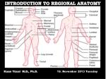 INTRODUCTION TO REGIONAL ANATOMY