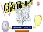 Ch2: The Cell