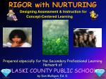Prepared especially for the Secondary Professional Learning Network of