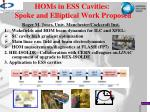 HOMs in ESS Cavities: Spoke and Elliptical Work Proposed