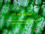 7-1 Life is Cellular