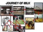 JOURNEY OF MILK