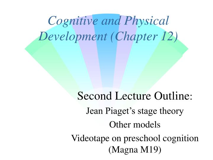 cognitive and physical development chapter 12 n.