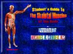 Student's Guide To The Skeletal Muscles of the Body