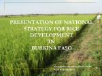 PRESENTATION OF NATIONAL STRATEGY FOR RICE DEVELOPMENT  IN  BURKINA FASO