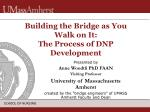 Building the Bridge as You Walk on It: The Process of DNP Development