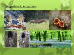 Competition in ecosystems