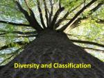 Diversity and Classification