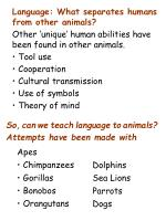 Language: What separates humans from other animals?