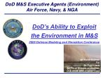 DoD M&S Executive Agents (Environment) Air Force, Navy, & NGA