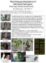 Plant Disease Resistance to Microbial Pathogens