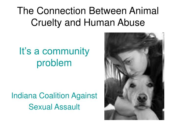 the connection between animal cruelty and human abuse n.