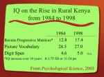 IQ on the Rise in Rural Kenya from 1984 to 1998