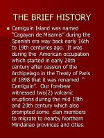 THE BRIEF HISTORY