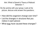 Aim: What is Darwin's Theory of Natural Selection ?