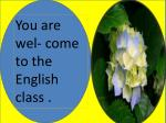 You are  wel - come to the English class .