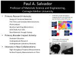 Paul A. Salvador Professor of Materials Science and  Engineeering ,  Carnegie Mellon University