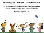 Modeling the Theory of Triadic Influence: