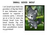 SMALL GOOD WOLF