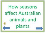 How seasons affect Australian animals and plants
